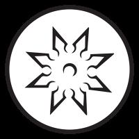 TOGAKURE RYU - web